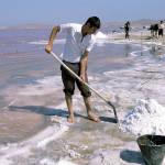 Минздрав изменил нормы потребления соли в соответствии с рекомендациями ВОЗ