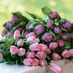 Цветочный этикет, или О чём расскажет ваш букет 8 Марта