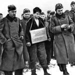Почему советские солдаты не брали в плен бойцов 197-й пехотной дивизии вермахта